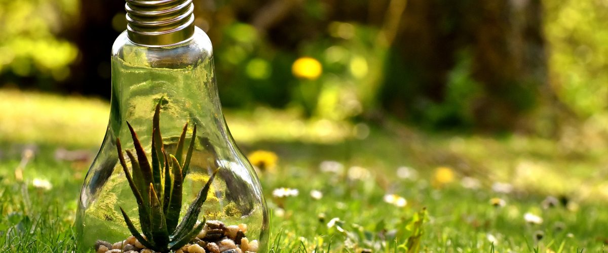 environmental-protection-3341942_1920